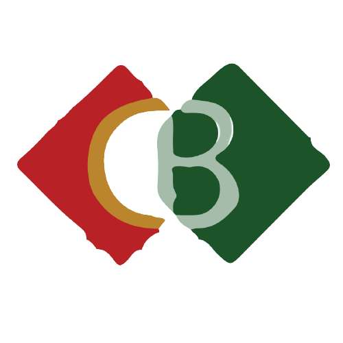 computer bazar logo